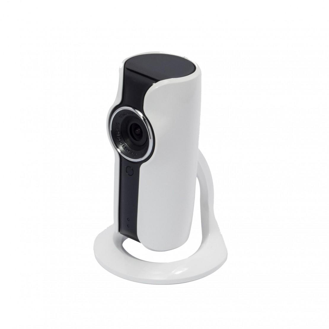 IP-buitencamera met wifi en HD (720p)